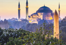 Istanbul, Blue mosque, evening, treetops and fog